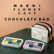 MARNI CHOCOLATE BAG