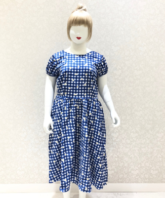 【Collectif】DEMIRA GINGHAM DAISY SWING DRESS